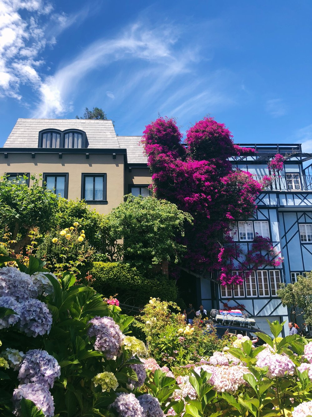 Lombard Street - Probably the nicest and most unique street on the west coast. Lombard street is filled with flowers and tourists. As nice as the street is, I enjoyed the surrounding houses and apartments event more.