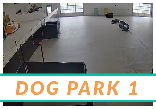 ARH2-thumb-DogPark1.jpg