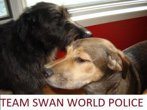 Team-Swan-World-Police-300x225.jpg