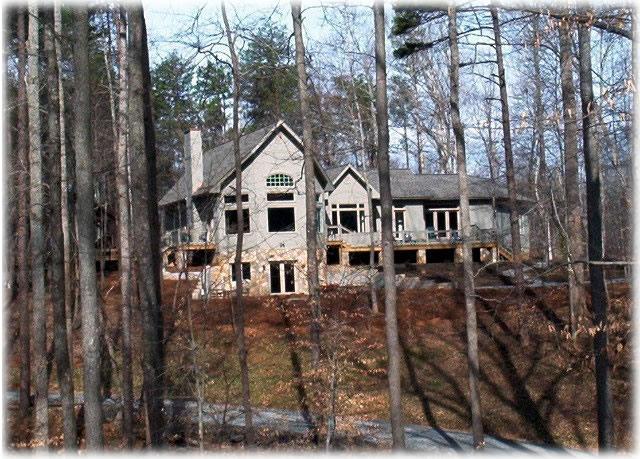 house-through-treesjpg.jpg