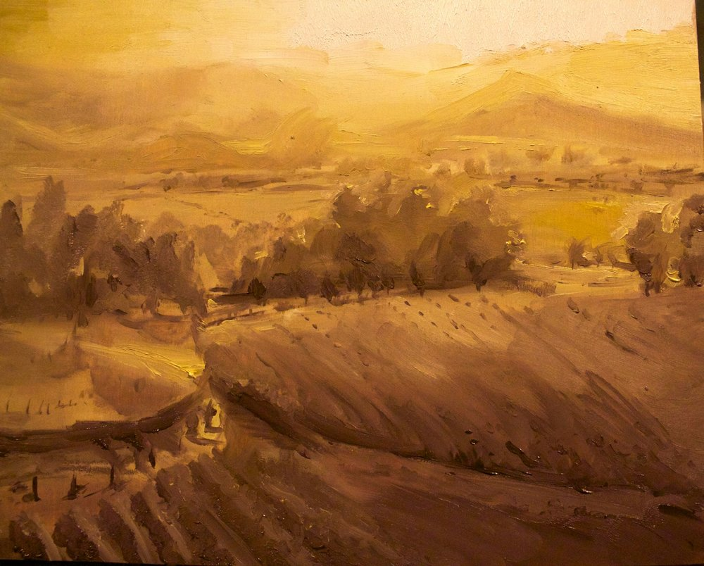 Wine yard, Landscape #11