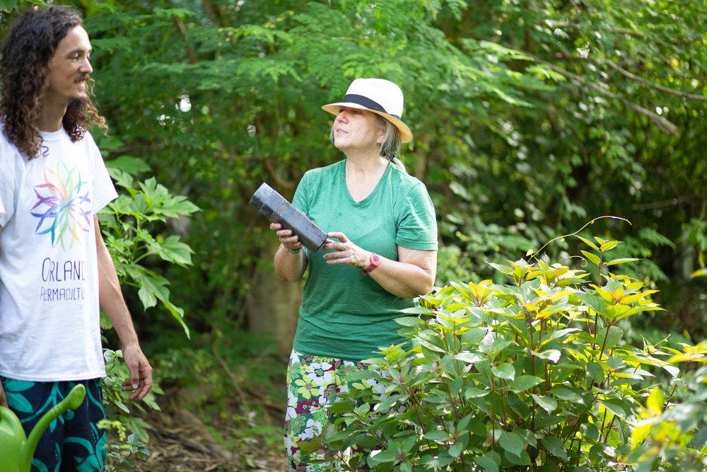 Gaia Gardeners FGCU Food Forest (10 of 42).jpg