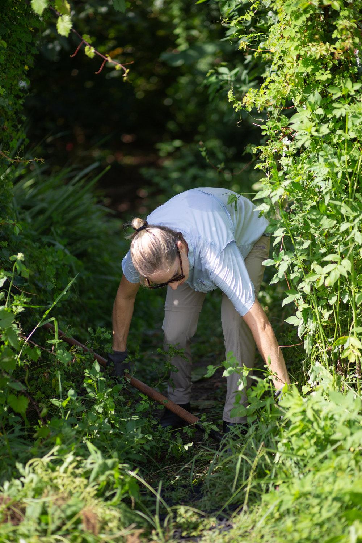 Gaia Gardeners FGCU Food Forest (11 of 42).jpg