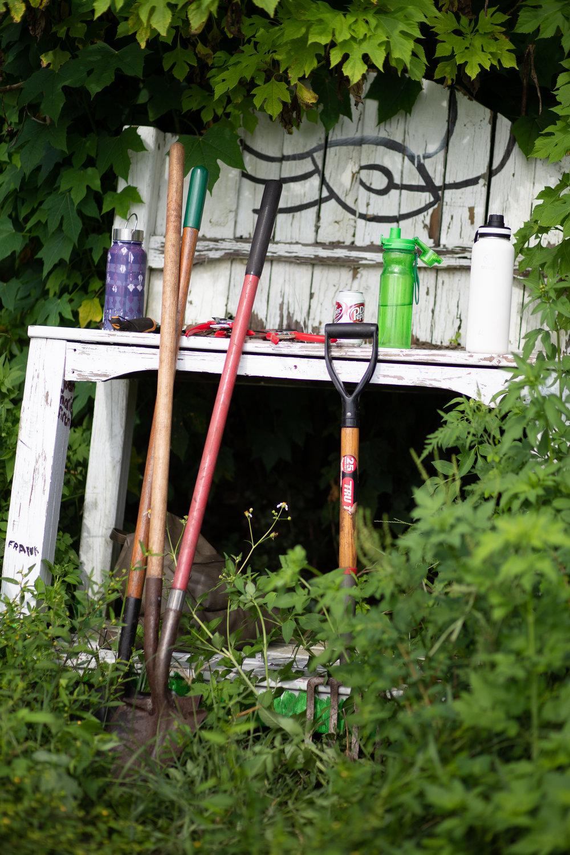 Gaia Gardeners FGCU Food Forest (13 of 42).jpg