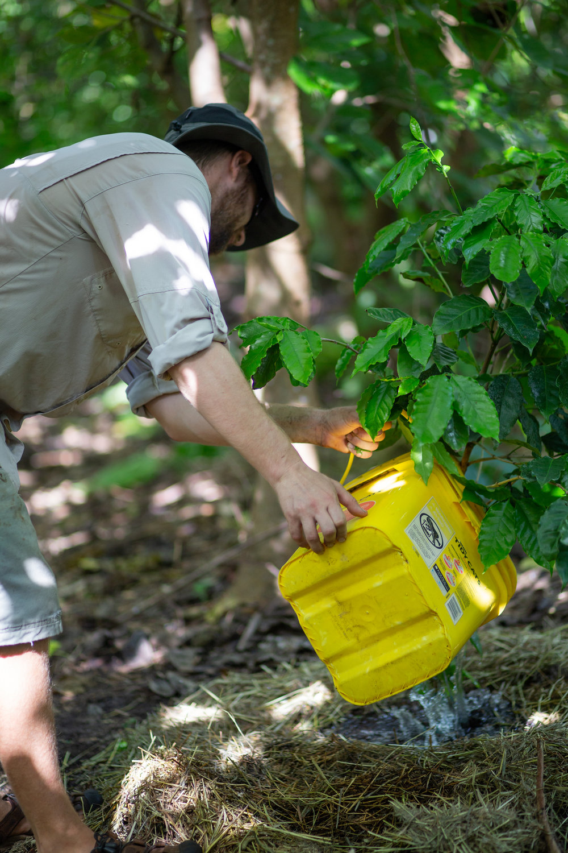 Gaia Gardeners FGCU Food Forest (17 of 42).jpg