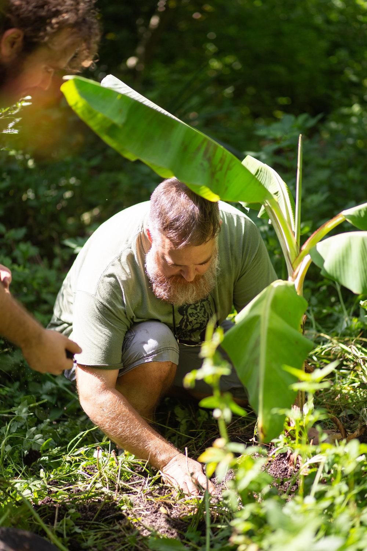Gaia Gardeners FGCU Food Forest (23 of 42).jpg