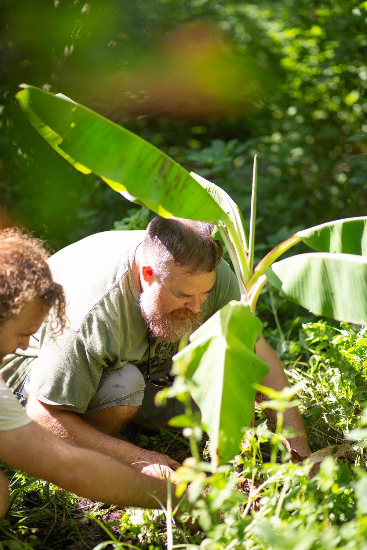 Gaia Gardeners FGCU Food Forest (24 of 42).jpg