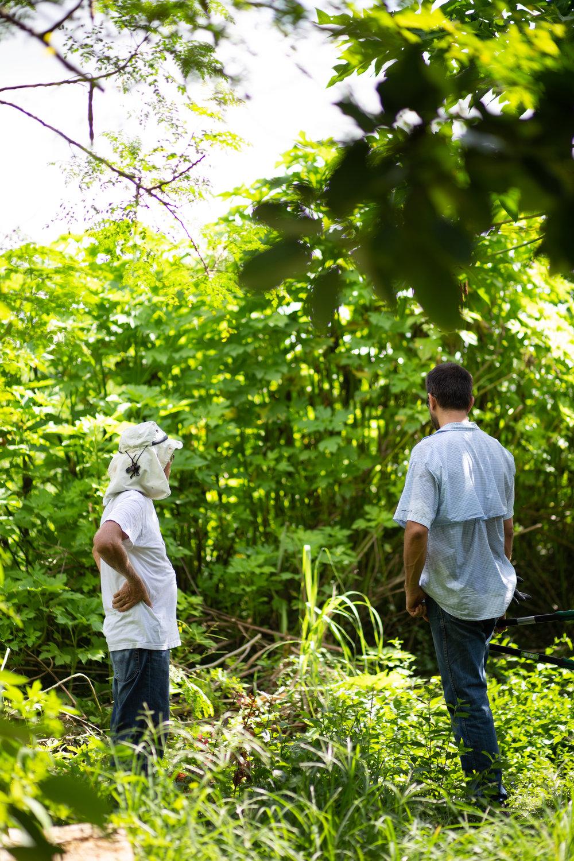 Gaia Gardeners FGCU Food Forest (25 of 42).jpg