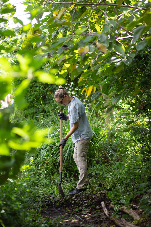 Gaia Gardeners FGCU Food Forest (26 of 42).jpg