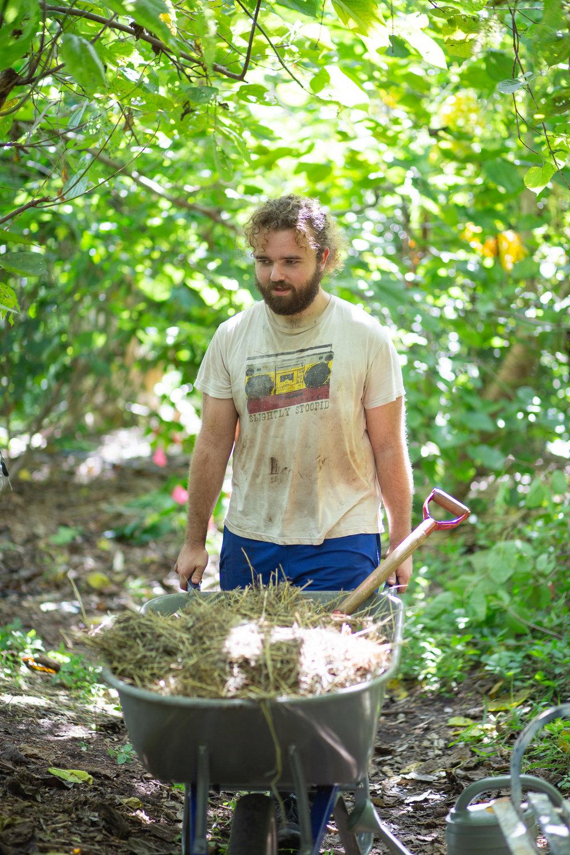Gaia Gardeners FGCU Food Forest (29 of 42).jpg
