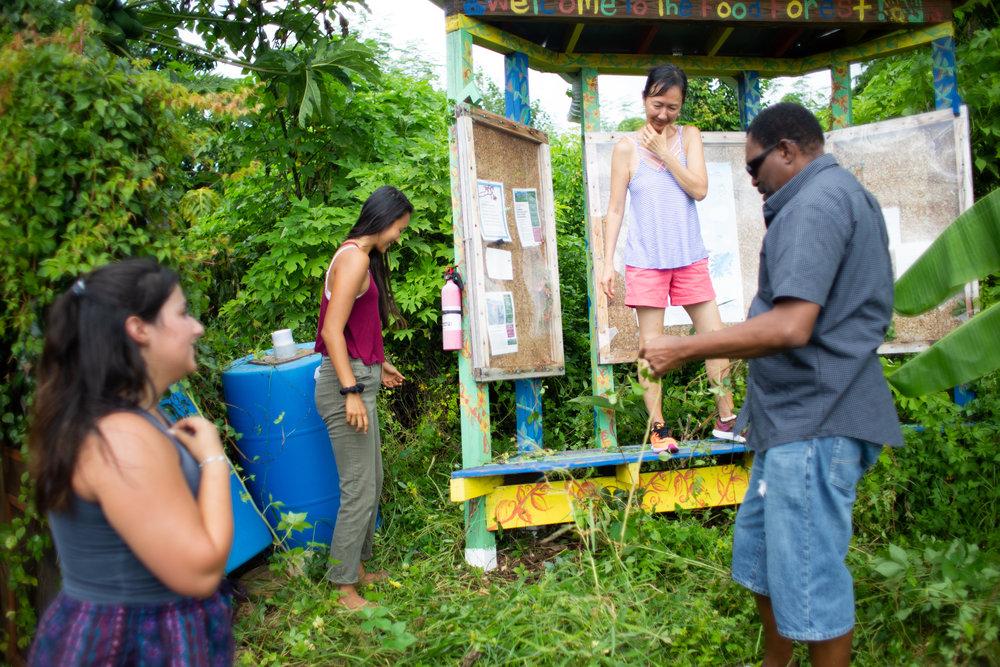 Gaia Gardeners FGCU Food Forest (42 of 42).jpg