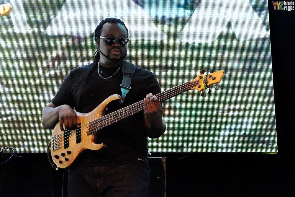 bass+close+up.jpg