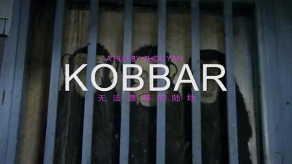 (Final cut editor) KOBBAR - Yan Zhou