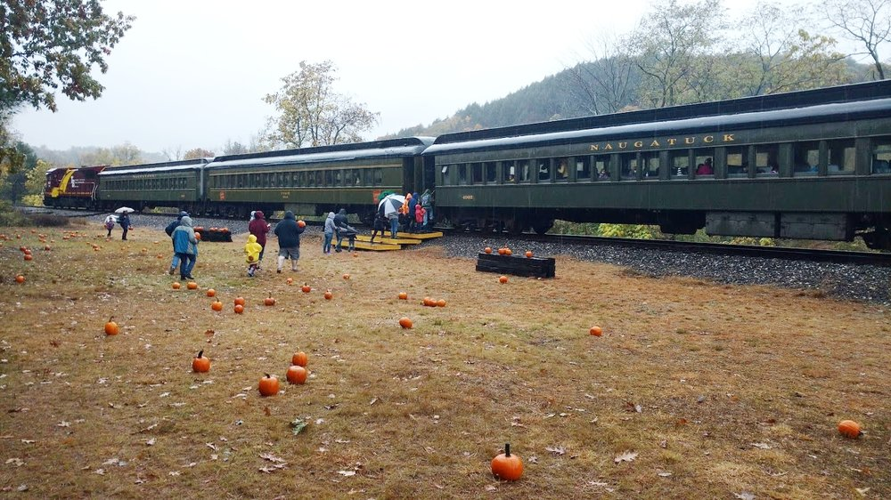 Railroad Museum of New England Pumpkin Patch Trains - Take a trip and enjoy the wonderful views and colors of autumn throughout the upper Naugatuck Valley on our Pumpkin Patch Trains! These special trains will bring you down to Waterville, where the beautiful Naugatuck River closely follows the tracks, crossing under in several places allowing for great views of the river and surrounding scenery. Visitors stop at RMNE's very own pumpkin patch. Families go out and select their very own pumpkin to bring home. The ride runs about 1.5 hours and the staff is super friendly. This runs October 13th, 14th, 19th, 20th, 21st, 27th and 28th. Tickets are $18 for adults, $16 for kids 3-12, $16 for seniors, and kids under 3 are $1.