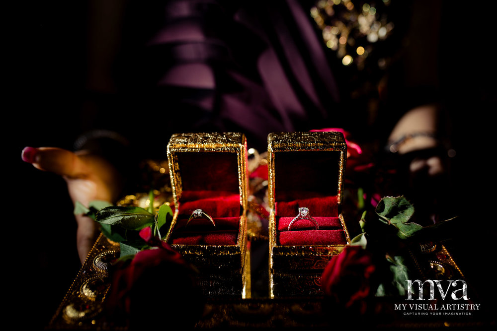 0046 -Manali_Sahil_MVA_INDIAN_ASIAN_WEDDING_DESTINATION-8716.jpg