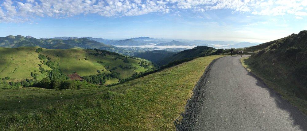 Pyrenees Path, Camino de Santiago, Spain