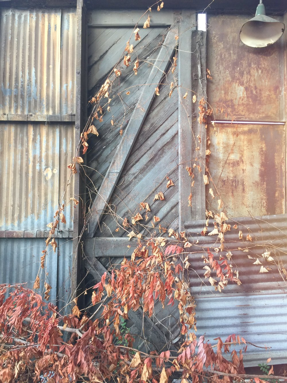 Warehouse Door with Fall Leaves