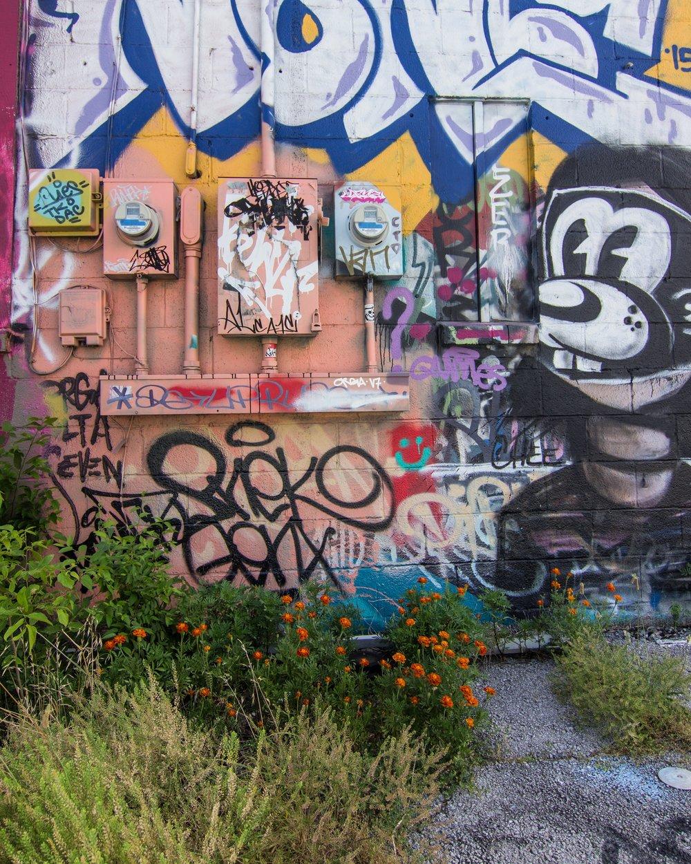 Micky Graffiti