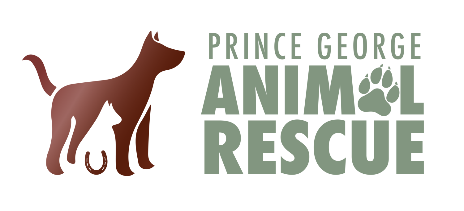 PG Animal Rescue