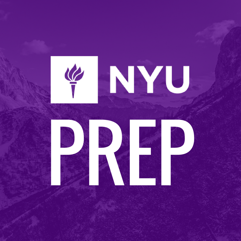 Nyu Sps Peace Research And Education Program What We Do