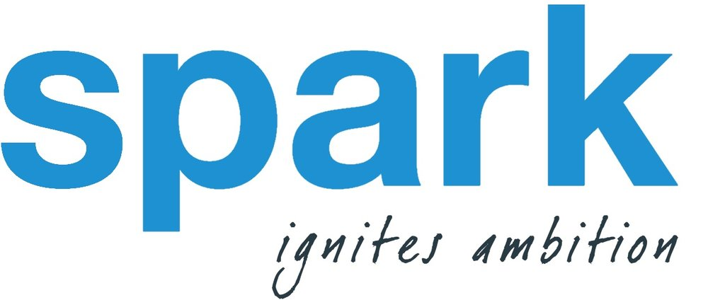 Copy of Spark logo.jpg