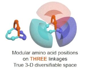 nanotein structure.jpg
