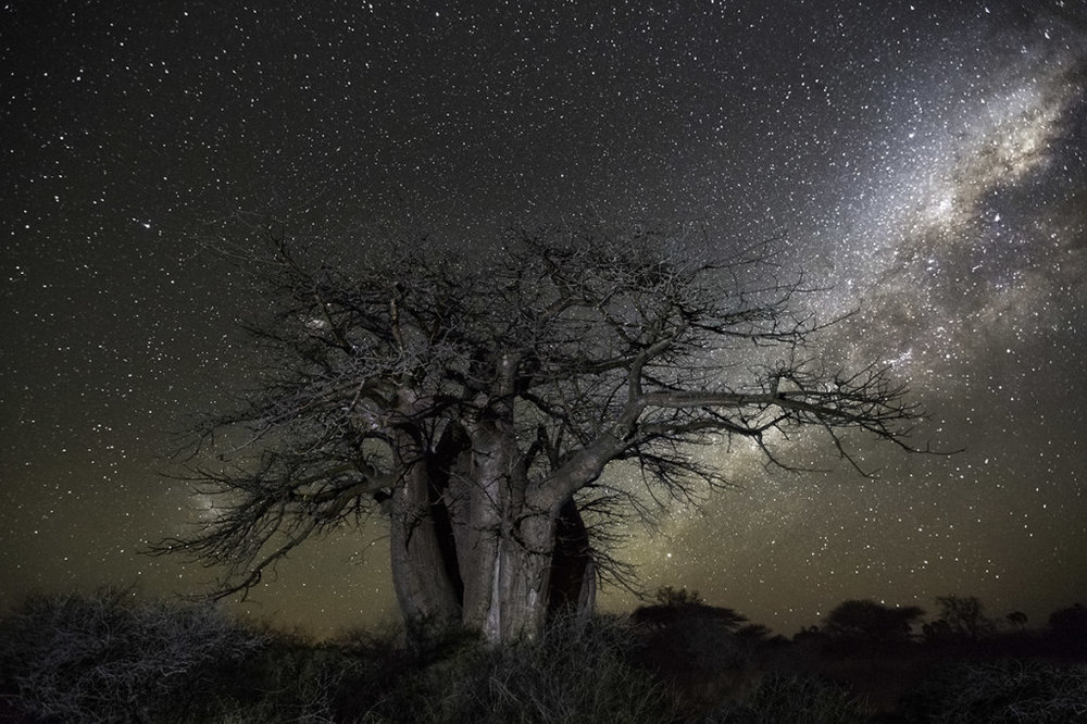 Photograph by Beth Moon