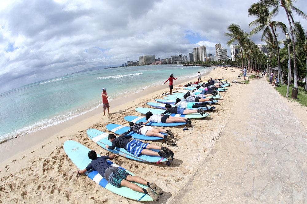 surf land4.JPG