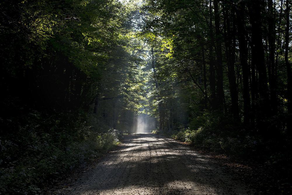 Nantahala National Forest road.