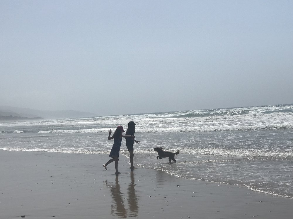 My girls and Rufus on the beach near Wild Dog Creek at Apollo Bay on the Great Ocean Road in Victoria.