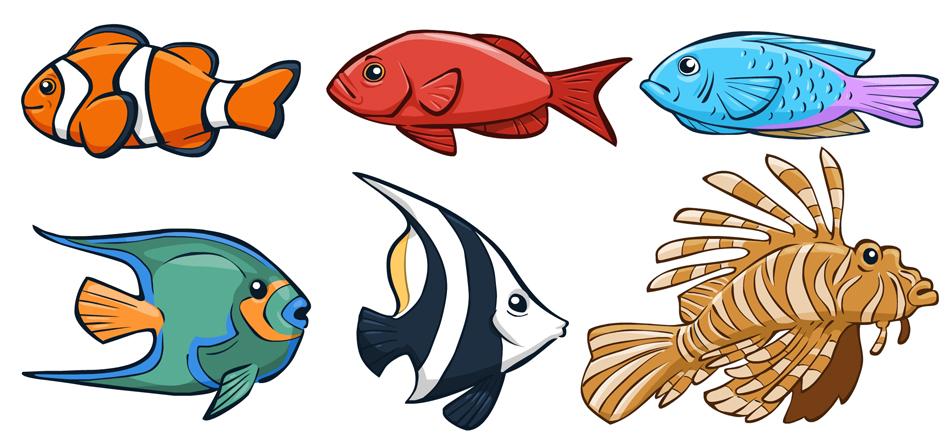 fish_1.jpg