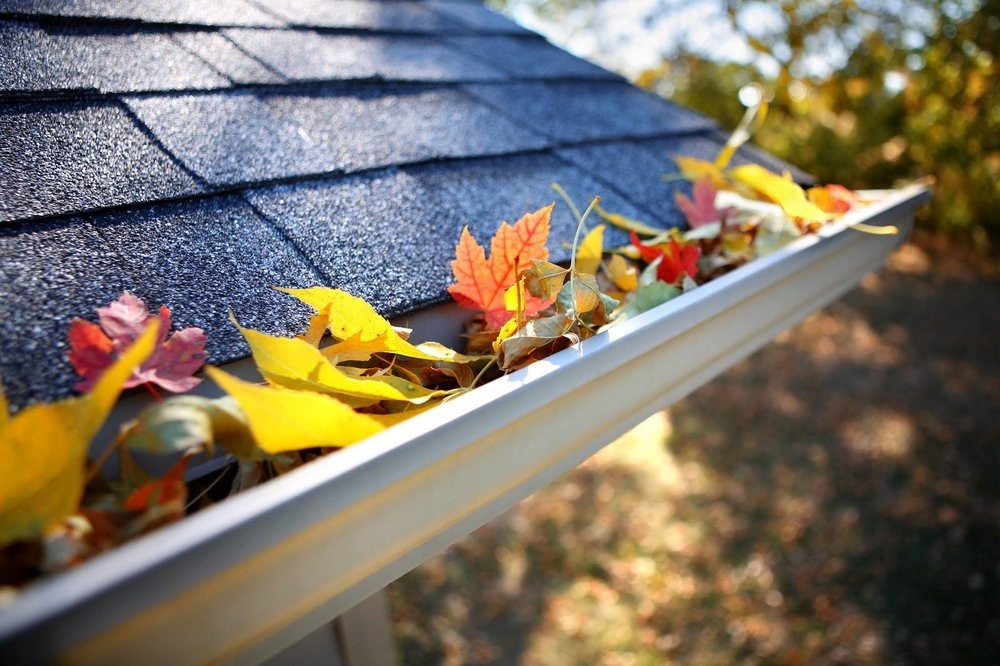 Gutter Cleaning - We specialize in eyes-on, hand-cleaned gutters to ensure that any moss, residue, or build-up of leaves is wholly removed and your gutters left spotless!