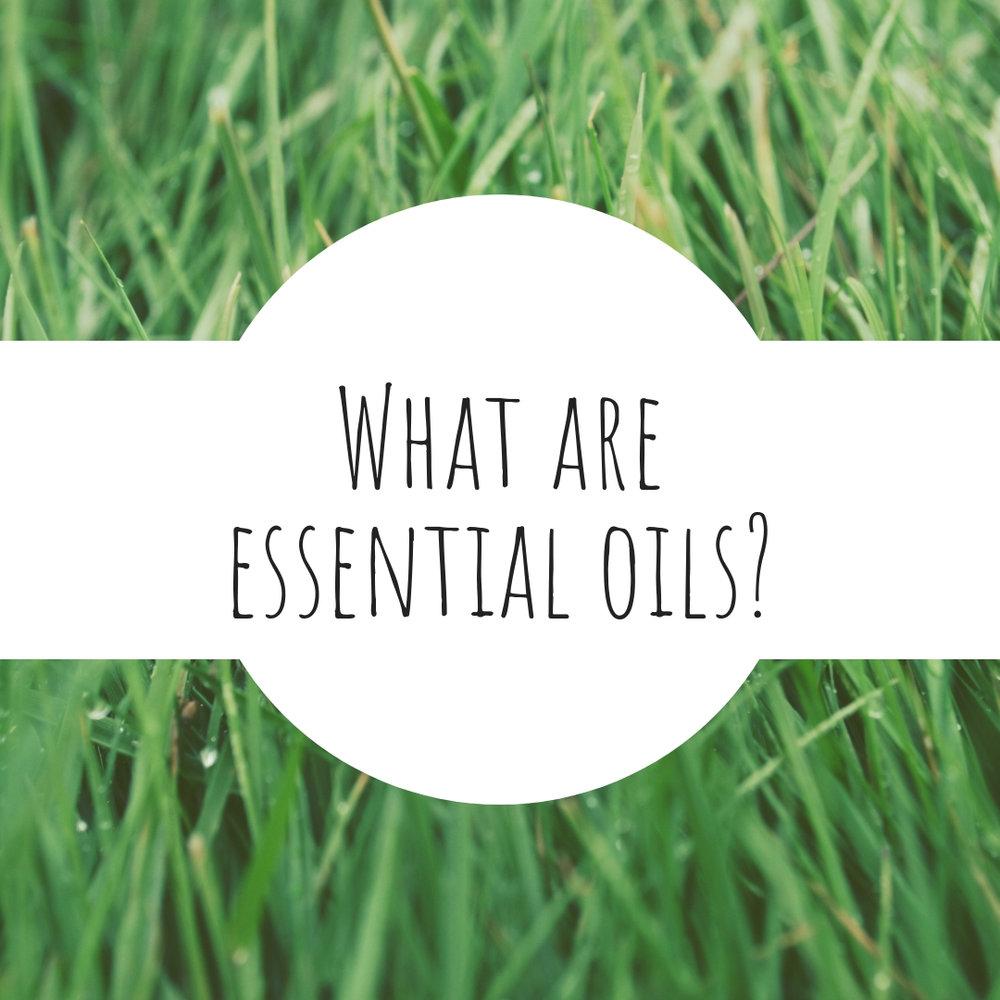 02 What are essential oisl.jpg