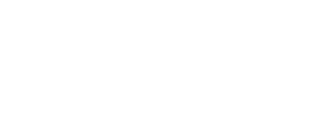 orion_final_logoWHITE.png