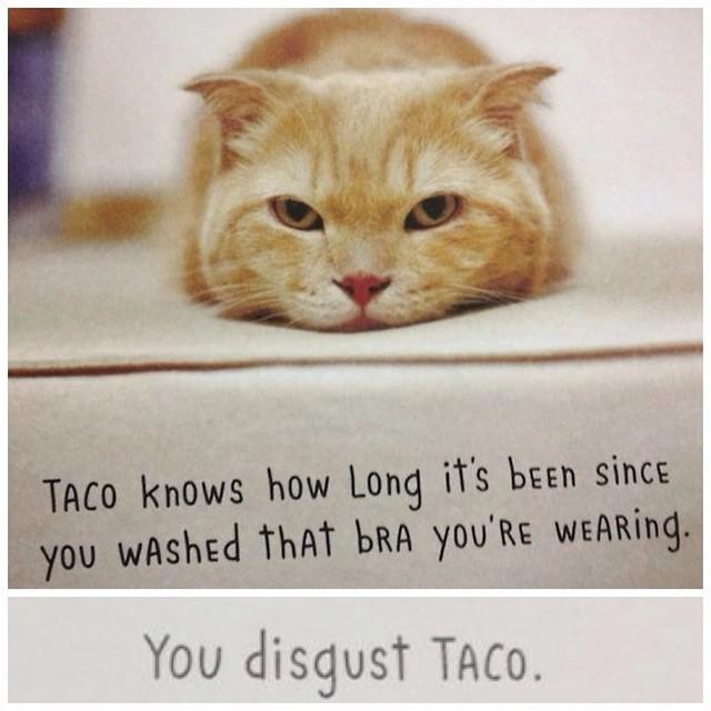 Tell it like it is #Taco