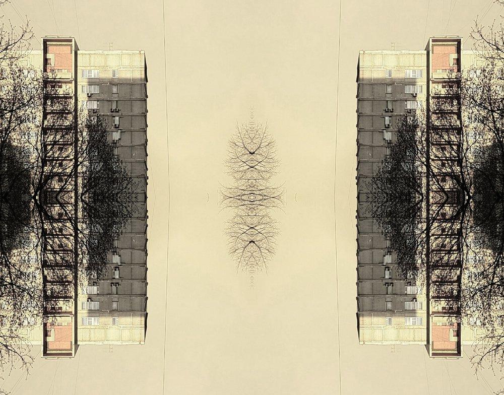 1891794154_mirror6.jpg