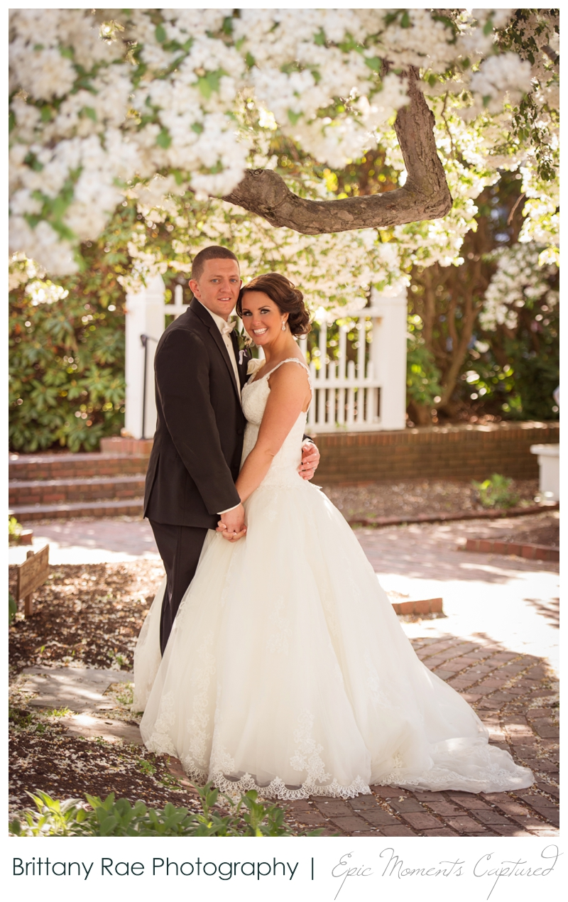 Sheraton Harborside Wedding in Portsmouth NH - Bride and Groom in Blossom Tree