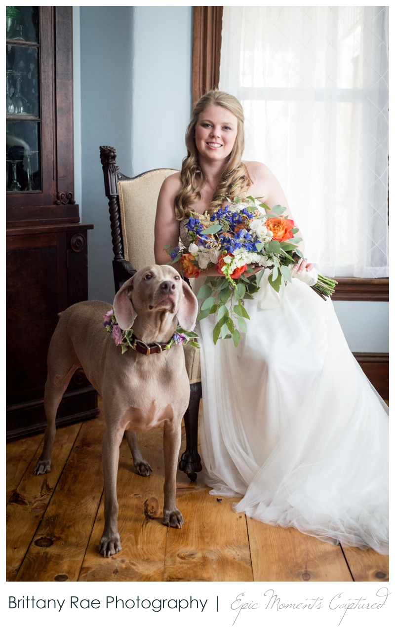 Zach's Farm Wedding Photos | York Maine - Bride with Dog