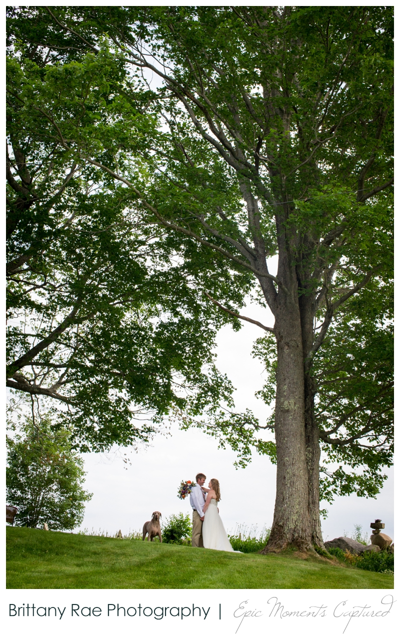 Zach's Farm Wedding Photos | York Maine - Wedding Portrait with Dog