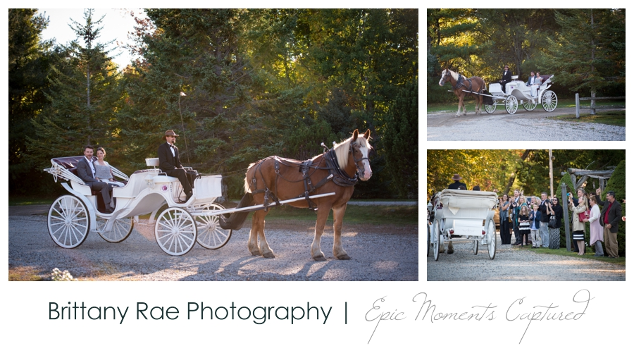 On the Marsh Wedding Kennebunkport Maine - Horse drawn wedding carriage