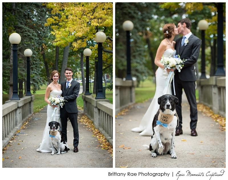 Portland Maine Wedding - Wedding with Dog