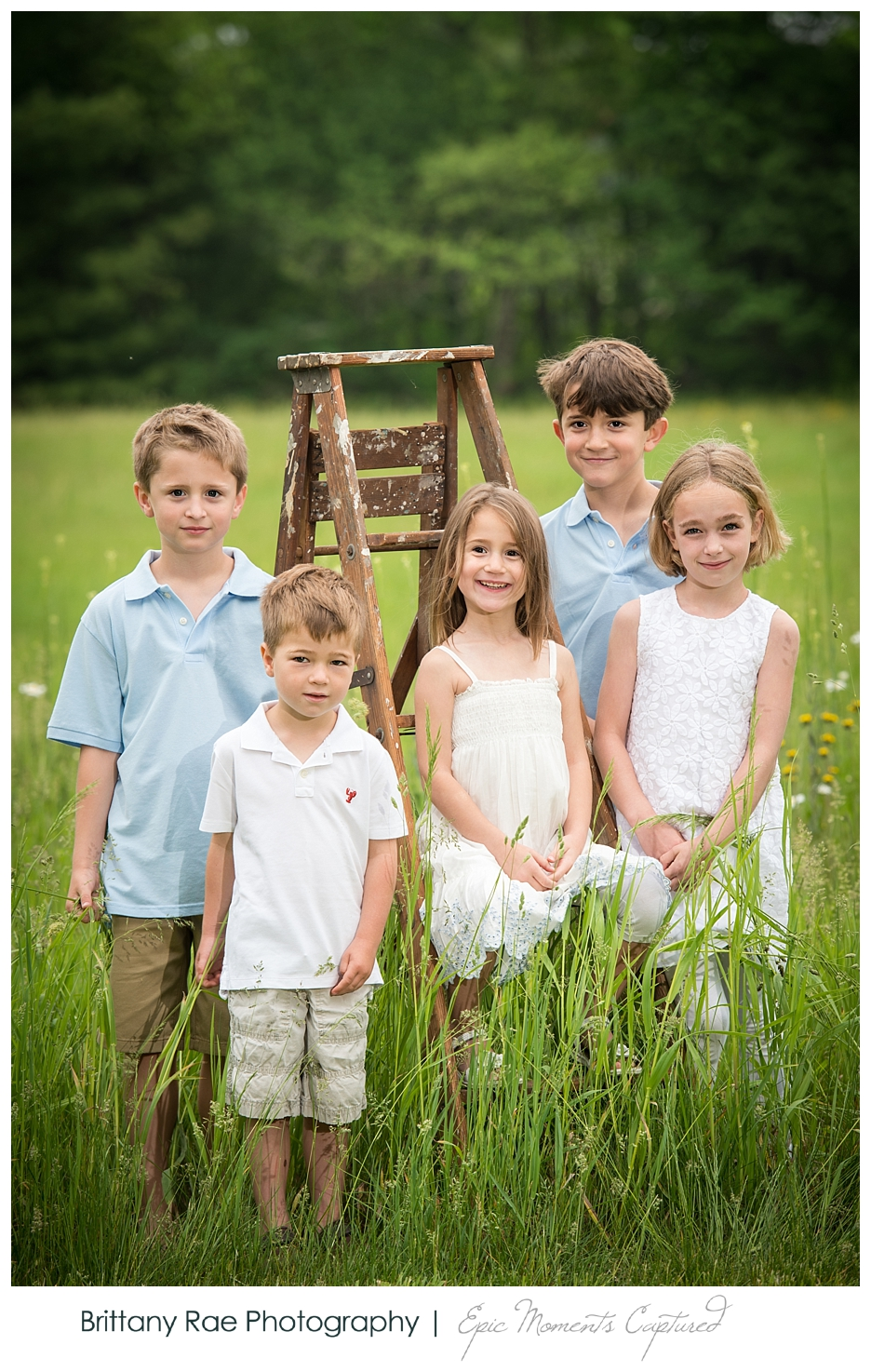 New Hampshire Family Portraits - Kids on a ladder in flowers