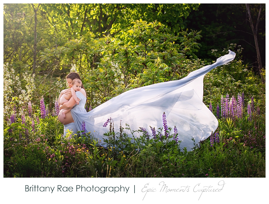 Portland Maine Maternity Photography - maternity in lupines