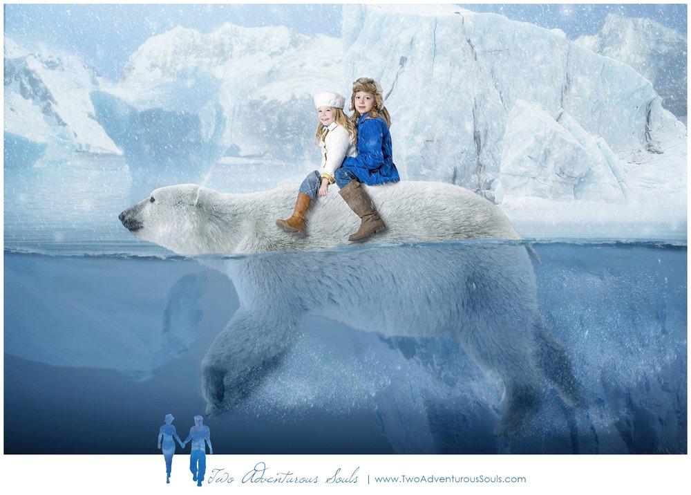 Maine Fantasy Photographer, Polar Bear - Polar Bear Christmas Card