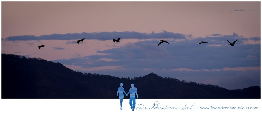 Costa Rica Wedding Photographers on Vacation in Tamarindo Costa Rica - Pelicans in Costa Rica