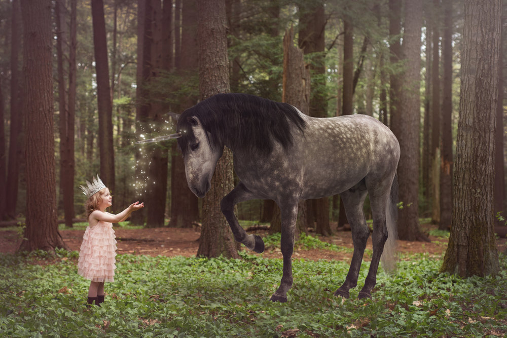 Fantasy Fine Art Maine Photographer - 07.jpg