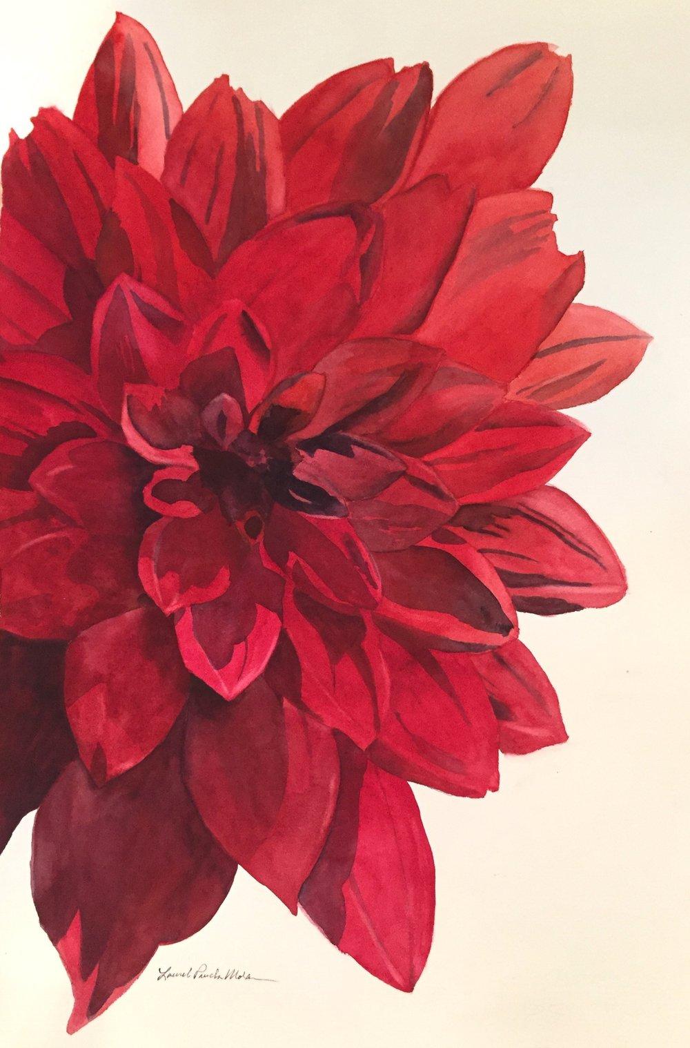 Dahlia 2018, ©Laurel Prucha Moran, watercolor