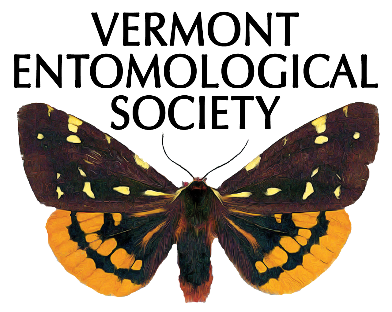 Vermont Entomological Society