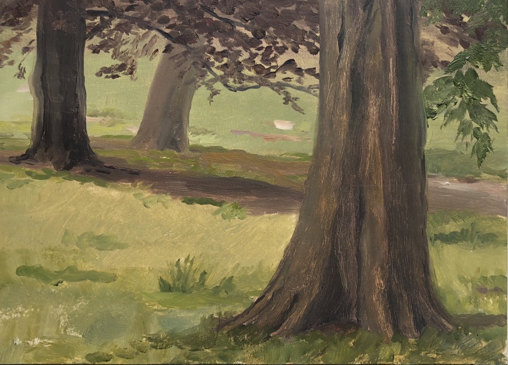 Prospect Park #5 Oil on panel 5 by 7 inches 2018