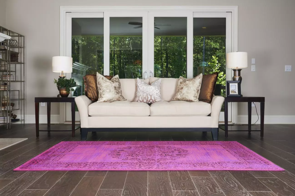 fuchsia_rug_in_living_room_.png